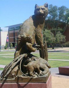 The Ghosts of the University of Arizona - Photo